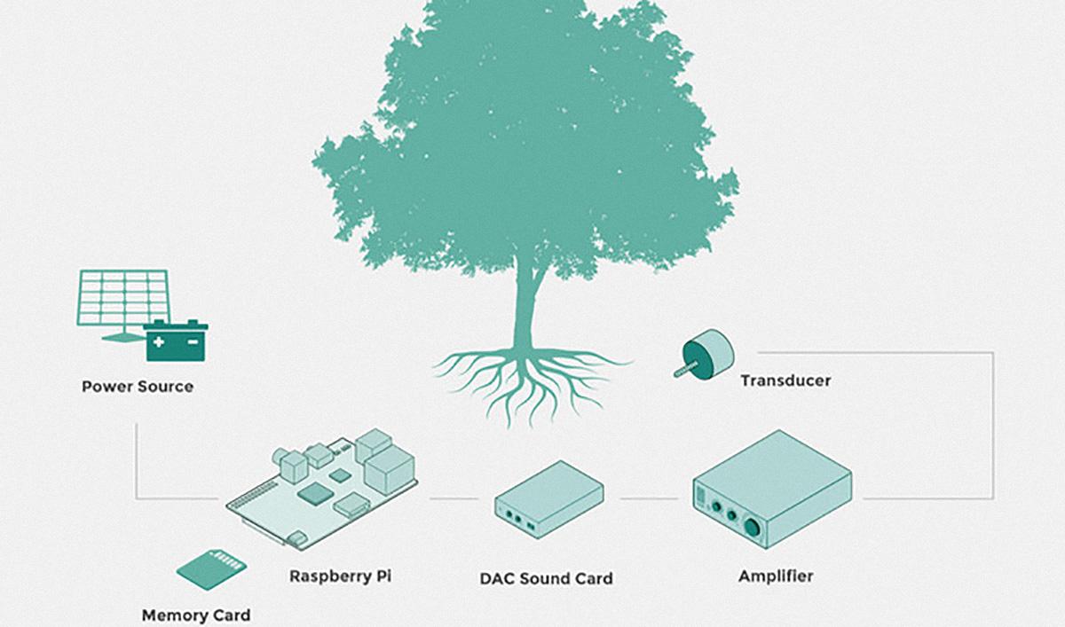 The Listen Tree Project   MIT – Docubase